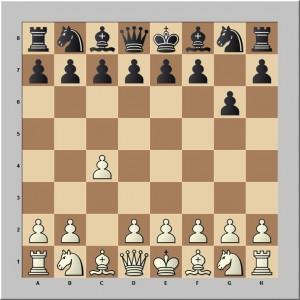 1.c4 g6